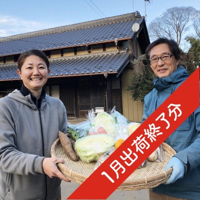 『出荷終了』【無農薬・自然栽培】季節の産直野菜いろどりセット Mサイズ 8~10種類