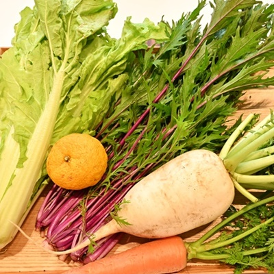 家族団らん、「簡単なのに超豪華!鍋料理に使える4種類の鍋野菜たち」野菜を切るだけで完成【鍋セット】冬のお野菜特集!季節限定のセットです。今だけゆずをプレゼント!