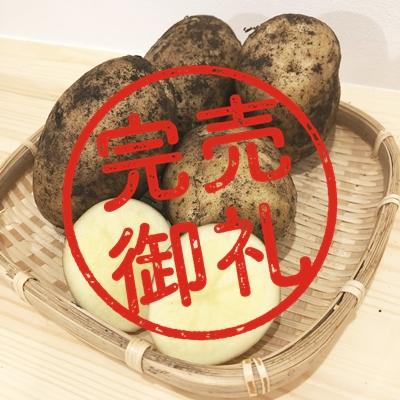 【好評につき完売】【ジャガイモ】デジマ(2kg)