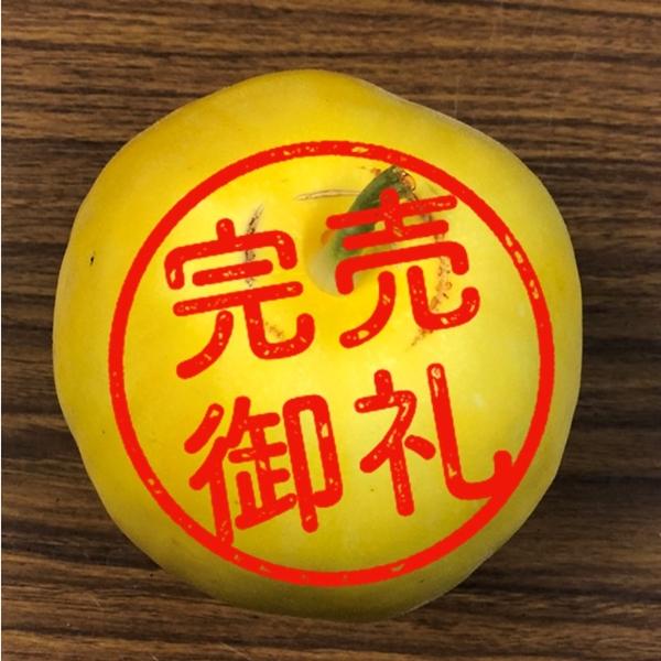 さわやかな甘み・夏の果実マクワウリ 2kgセット【農薬・化学肥料不使用】