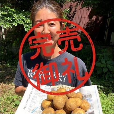 【2021年6月収穫】キタアカリ(ジャガイモ)2kg【新ジャガ】