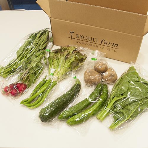季節のお野菜セット02