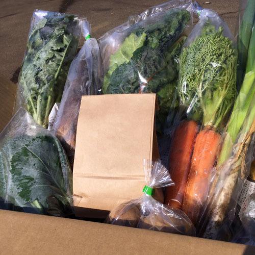 季節のお野菜・お米セット 1~2名様用