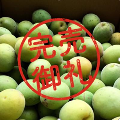 【予約商品】【無農薬】龍ヶ崎生まれ・自然育ちの「梅の実」3kg
