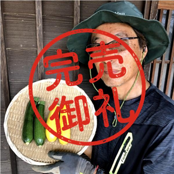 【農薬・化学肥料不使用】2色のズッキーニ・800g