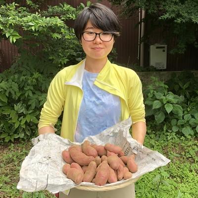 【2021年6月収穫】ノーザンルビー(ジャガイモ)2kg【新ジャガ】
