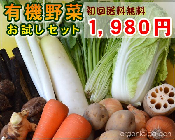 JAS有機 初めての方限定!有機野菜お試しセット【送料無料】
