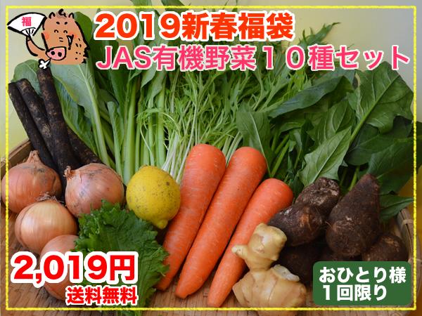 【2019新春福袋】JAS有機野菜10種セット