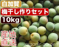 shirokaga_250-set10.jpg