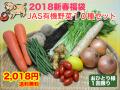 【2018新春福袋】 JAS有機野菜10種セット【送料無料・おひとり様1回限り】