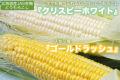 【予約】北海道産JAS有機 とうもろこし 25本入り(イエロー・ホワイト詰め合せ)【産地直送・クール送料無料】