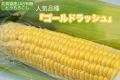 【予約】北海道産 JAS有機 とうもろこし 25本入り【産地直送・クール送料無料】