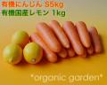 [ジュース作りに]JAS有機にんじんS5kgと有機国産レモン1kgのセット【送料込】