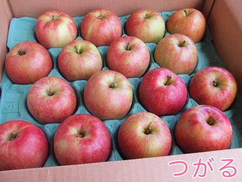 有機りんご(つがる)