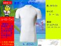 【トウワ】適圧サポート ショートスリーブシャツ【TOWA 藤和 8455】クールアイスタイプ 脇・背面メッシュ◎S~LL◎長袖