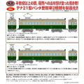 鉄コレ 叡山電車デナ21型A(125号車)/B(126号車)