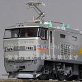 EF510-500カシオペア色