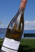 【超地産地消ワイン】     カナダ産・白ワイン ピノブラン2015年産  (2017年10月輸入予定)