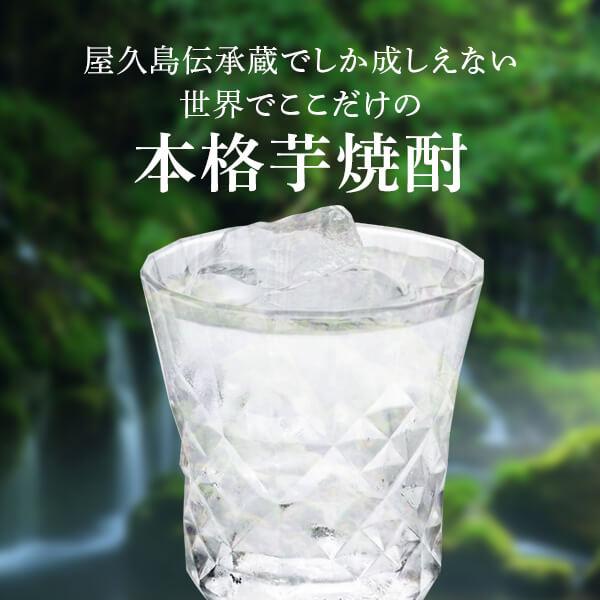屋久島焼酎
