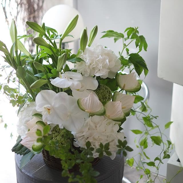 飲食店開店祝いの花