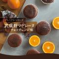 【1日限定5箱】武蔵野マドレーヌ<チョコ オレンジ>10個入