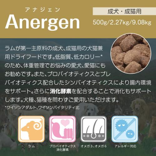ワイソン/アナジェン特徴