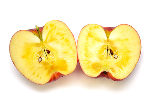 蜜入りが見事な風味の良いりんご。ひめかみ
