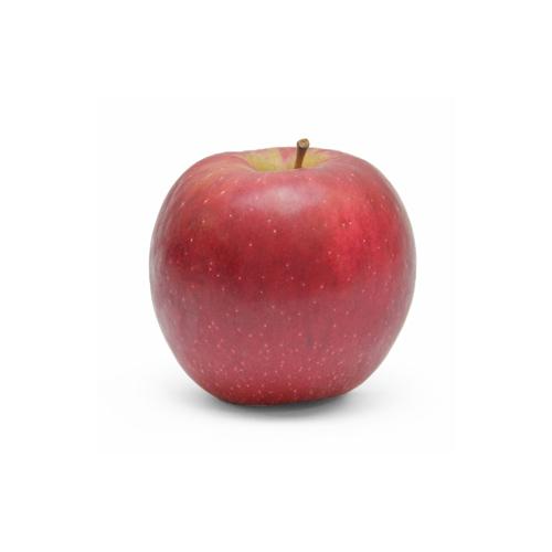 リンゴ紅玉