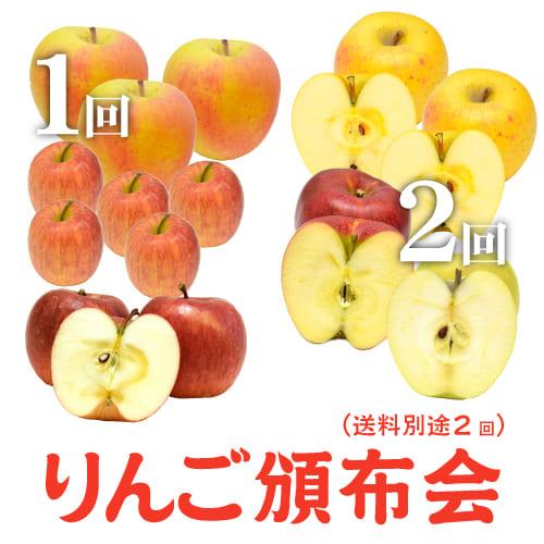 りんご頒布会11月