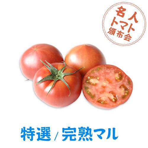 トマト頒布会マル