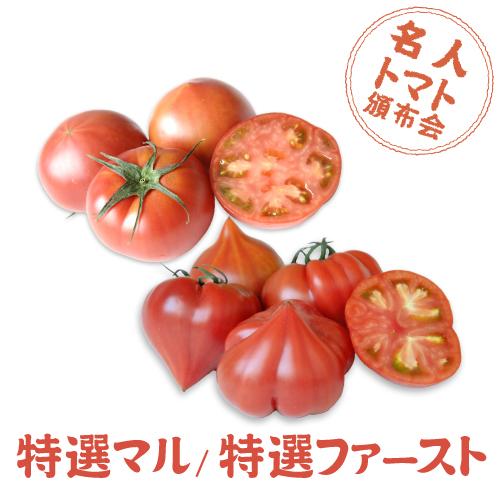 トマト頒布会マルファースト