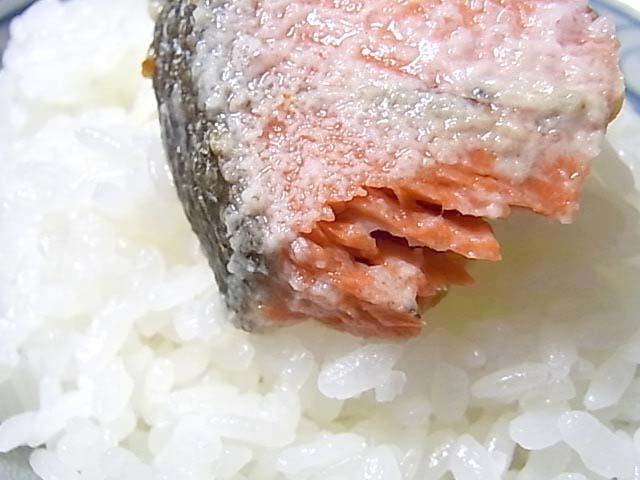 激辛紅鮭F