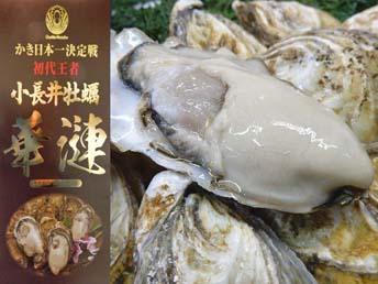 小長井牡蠣華蓮
