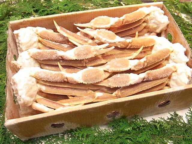 冷凍・生ずわい蟹