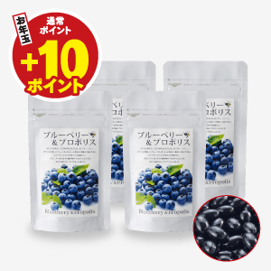 ブルーベリー&プロポリス4袋セット(62粒入×4袋)【キャンペーン特価】 [商品番号:1282]