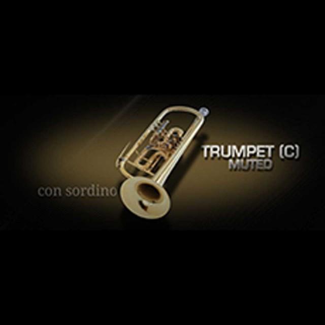 Vienna Symphonic Library/VIENNA TRUMPET (C) MUTED【期間限定キャンペーン】