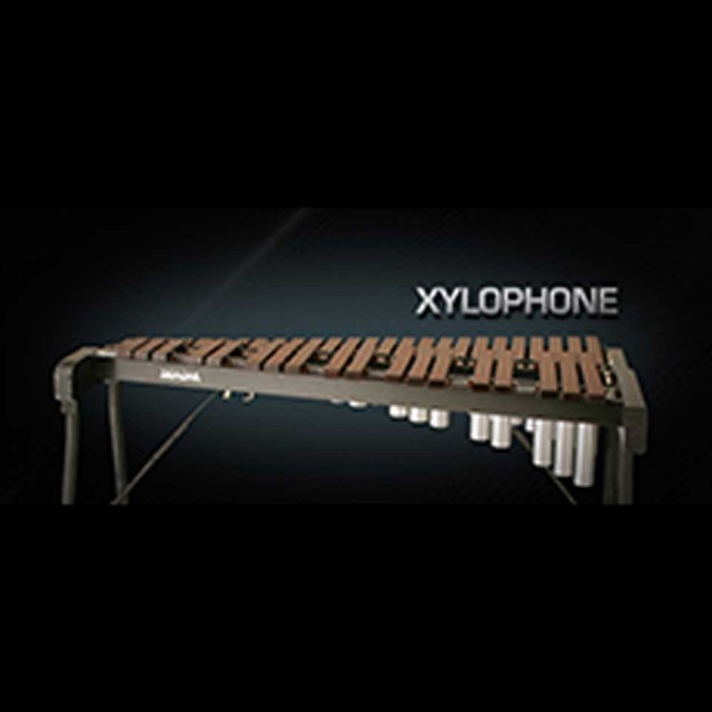 Vienna Symphonic Library/VIENNA XYLOPHONE【期間限定キャンペーン】