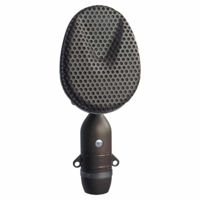 Coles/4038 Studio Ribbon Microphone
