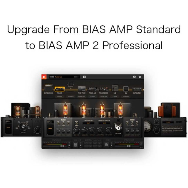 Positive grid/Upgrade From BIAS AMP Standard to BIAS AMP 2 Professional【オンライン納品】