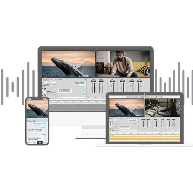 Soundwhale/Soundwhale Level 2 Recording Solution (Perpetual)【オンライン納品】