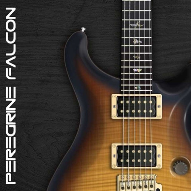 AMPLE SOUND/AMPLE GUITAR P II【オンライン納品】【在庫あり】
