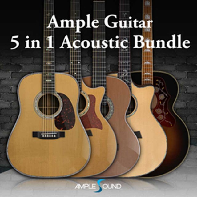 AMPLE SOUND/AMPLE GUITAR 5 IN 1 ACOUSTIC BUNDLE【オンライン納品】【在庫あり】