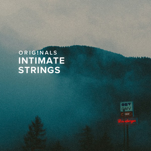 SPITFIRE AUDIO/ORIGINALS INTIMATE STRINGS【オンライン納品】【在庫あり】