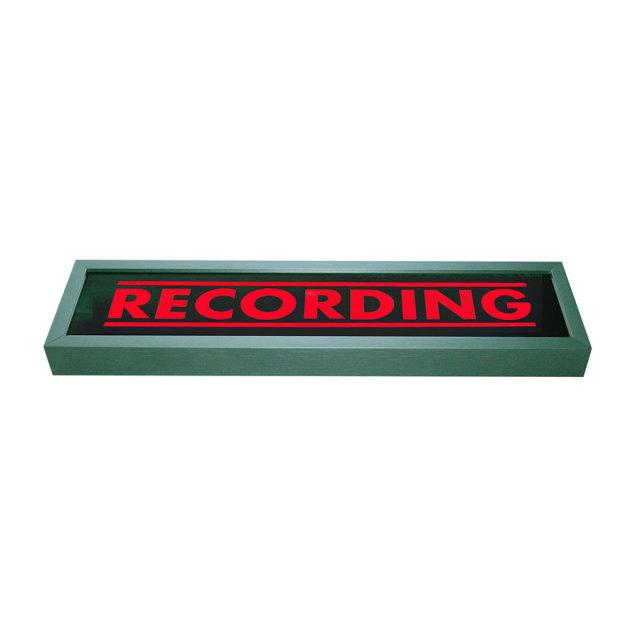 PunchLight/Recording Display
