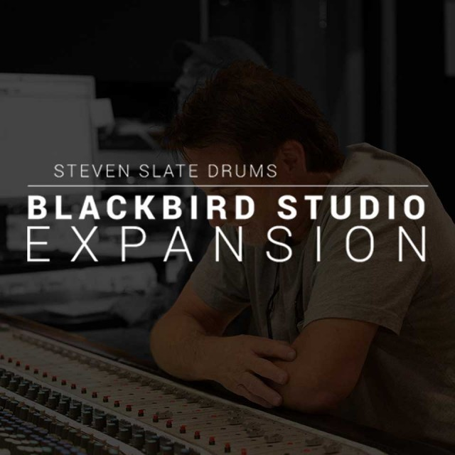 Steven Slate Drums/Blackbird Studios Drums EXPANSION【オンライン納品】【SSD拡張】
