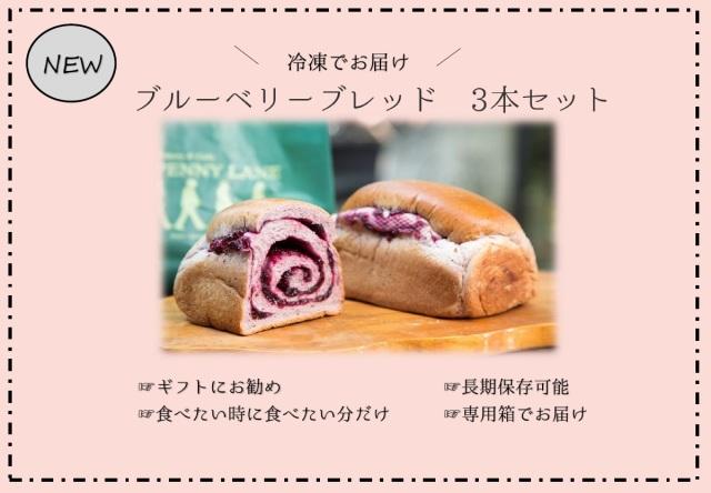 ブルーベリーブレッド3本セット【冷凍便】
