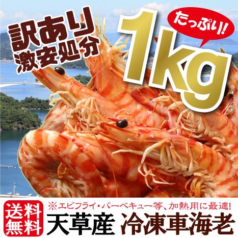 \夏の最終水揚げSALE!1000円OFF/ワケあり冷凍くるまえび1kg(サイズ無選別・キズあり・脱皮直後のソフトシェルあり)