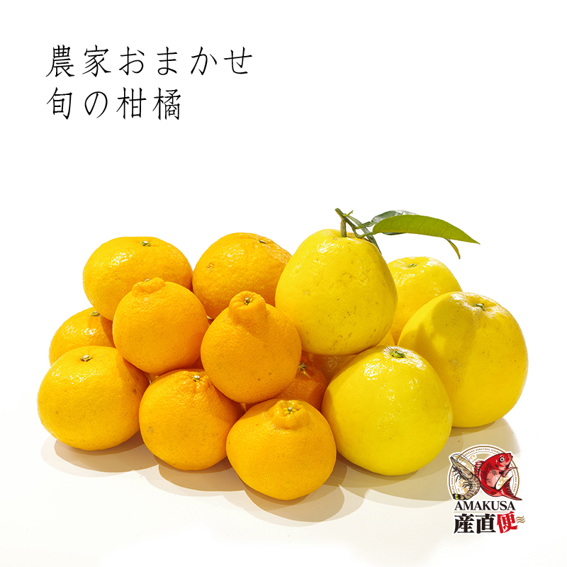 おまかせ柑橘