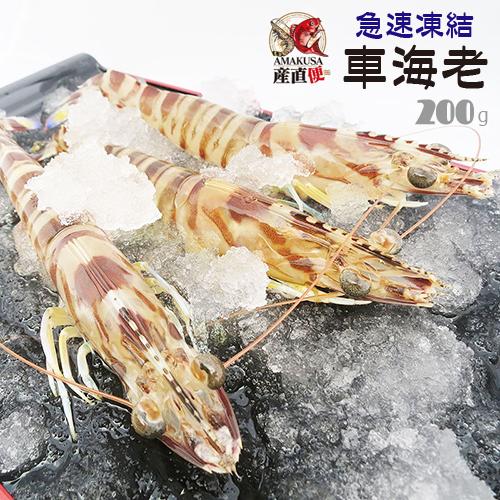 送料無料 急速凍結車海老200g(8-10尾入り)