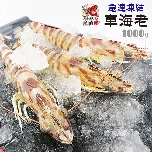 送料無料 急速凍結車海老1kg(40-50尾)